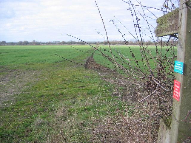 Footpath to Bishop Wilton