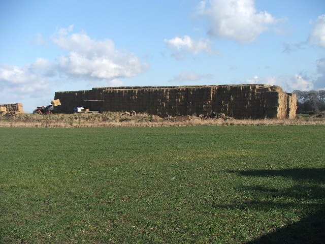Giant haystack.