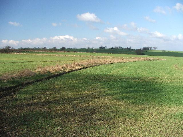 Farmland between Fitzwilliam and Havercroft.