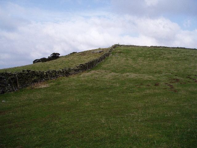 Mountain grazing land