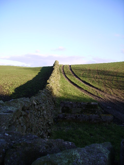 Wall Near Crag Farm