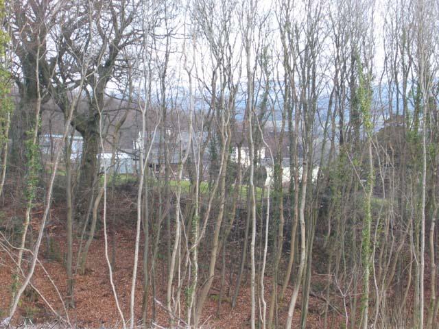 Pentwyn Farm from Cefn Mably Woods