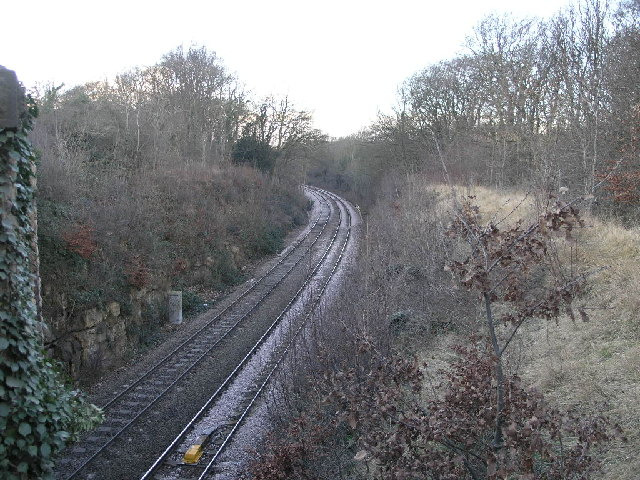 Railway Through Woodland