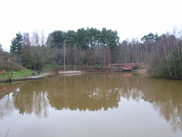 The pond, Savernake Park, Bracknell