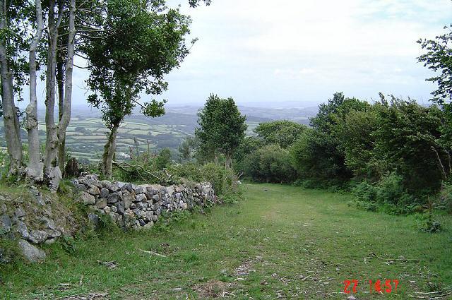 The track near Lane Head - East Dartmoor