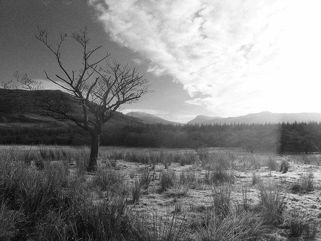 Lower Glen Strae.