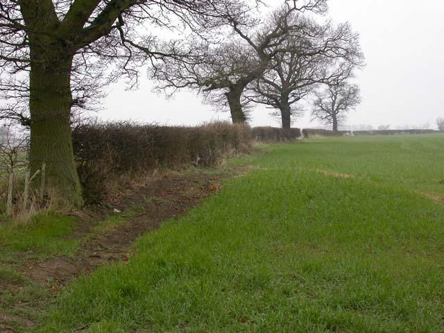 Parish Boundary Hedgerow