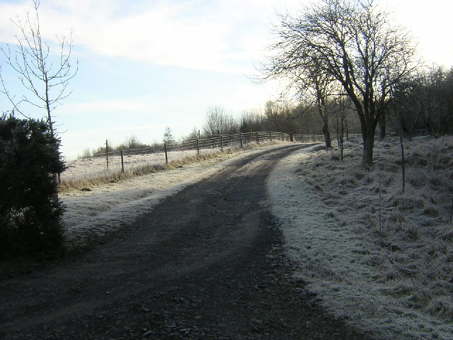 Track Leading to Turner