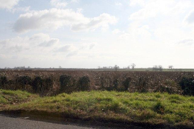 Fields near Exton