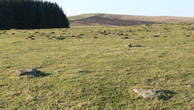 Ancient Stone Rows, Cefnen Wen, Pentrefoelas