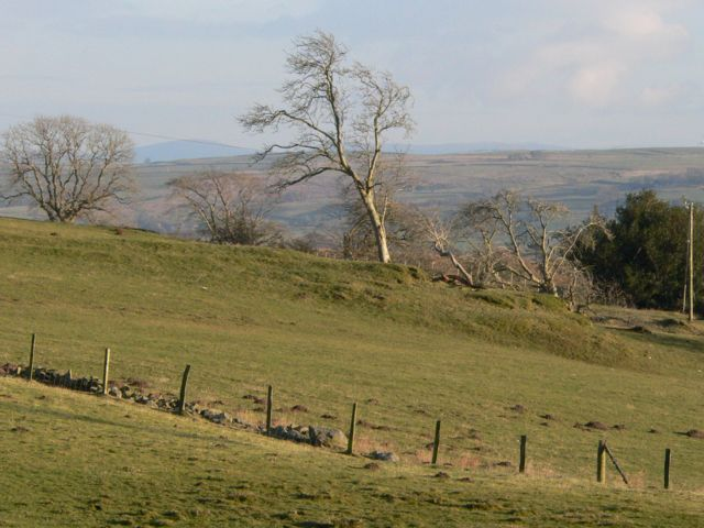 A view of the countryside behind Old Voelas looking towards Nant Y Creau
