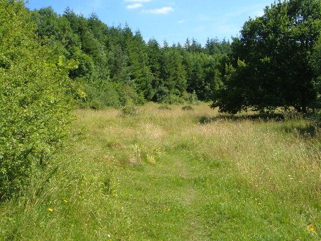 Quants Nature Reserve