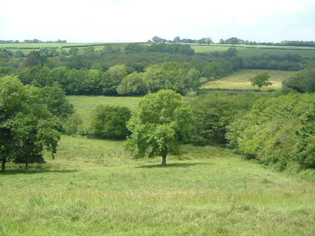 View near Belcombe, Blackdown Hills