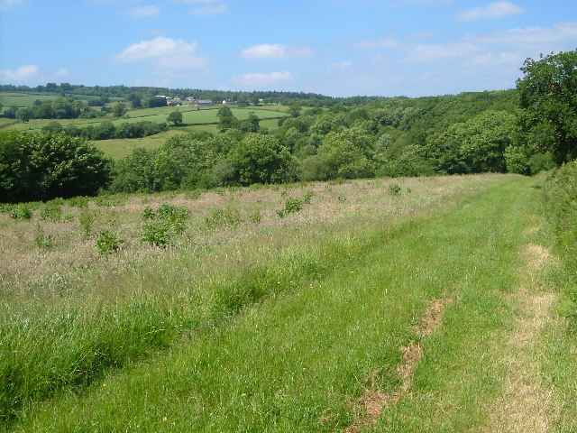 Blackdown Hills at Wheatlands Coppice