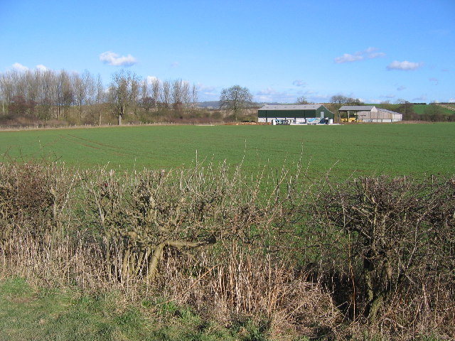 Skirpenbeck Farmland