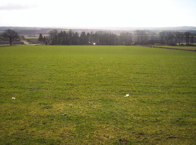 Grassy Field Above Mains of Balhall