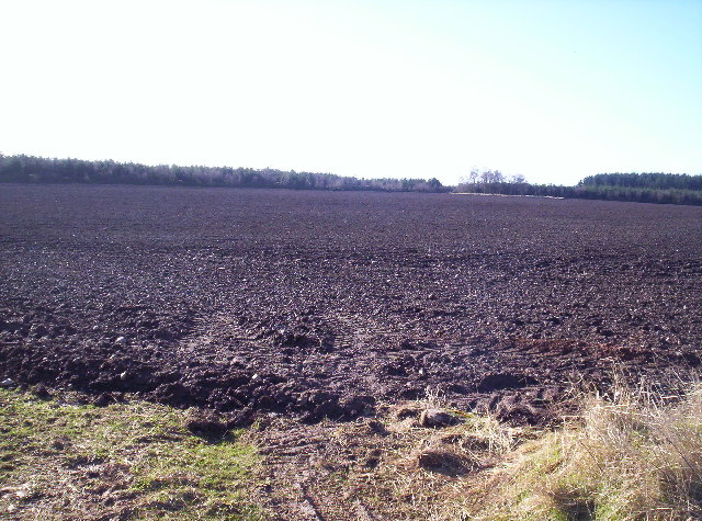 Ploughed Field and Woodland