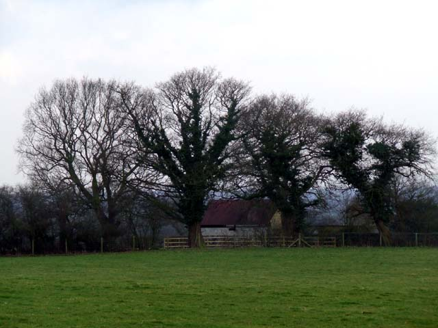 Farm building near to the trees