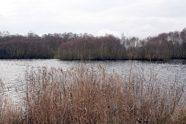 Turbary Lakes at Caldecote Fen