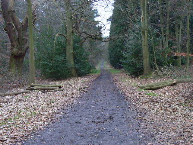 Abury Lane, Swinley Park