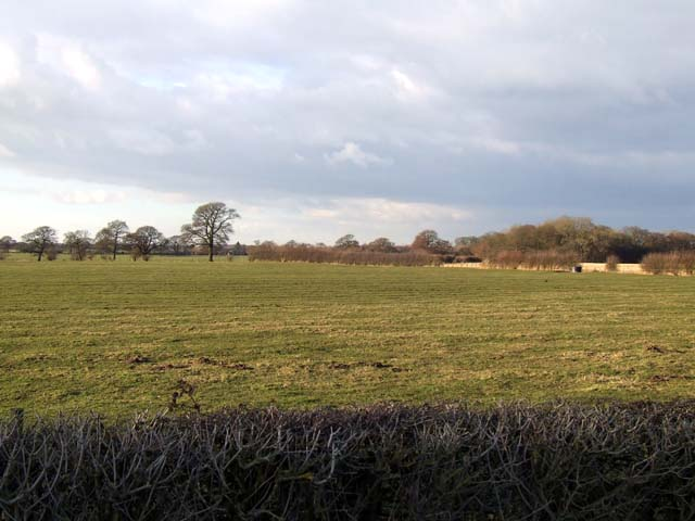 Fields near Burrows Bridge