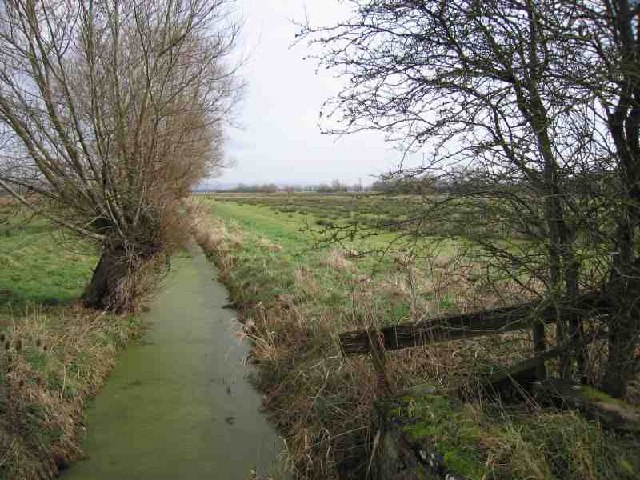 East Backwater Rhyne