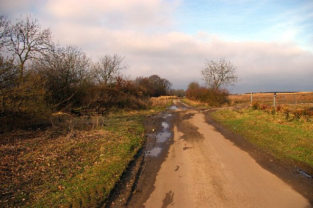 The Track to New Holmes Farm