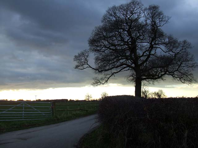 Road leading to Mere House