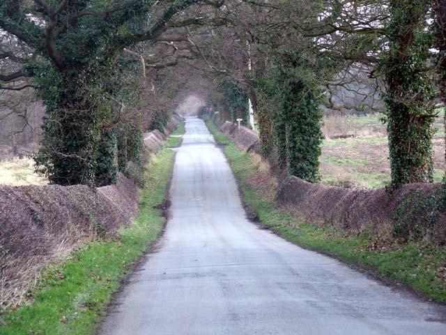 Ravens Lane