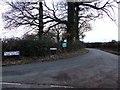 SJ5951 : Blackhurst Farm road by Nigel Williams