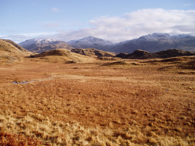 Marshy ground above Eskdale