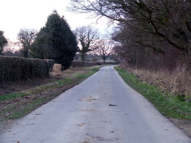 Country lane at Larden Green