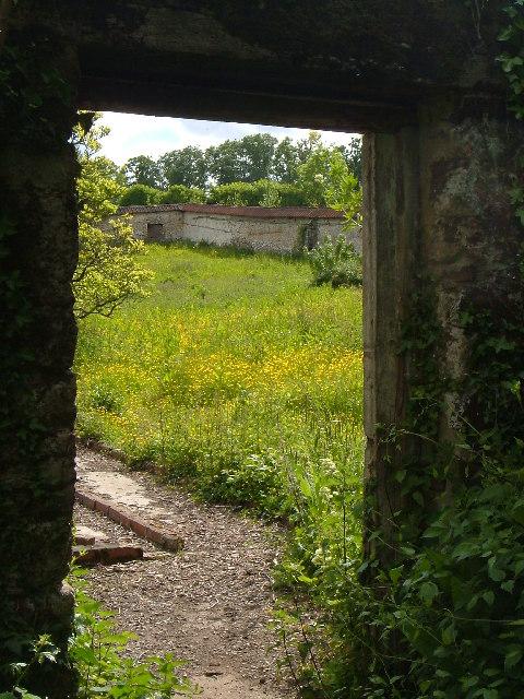 Walled garden at Parke