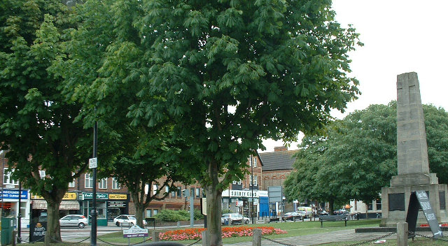 Wallington Green war memorial