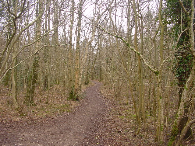 Path in Gait Barrows Reserve