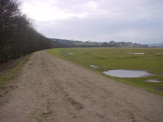 Disused Railway Embankment