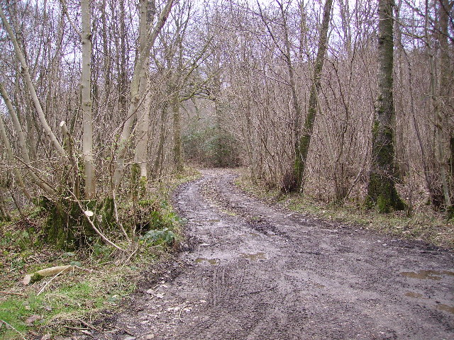 Track Witherslack