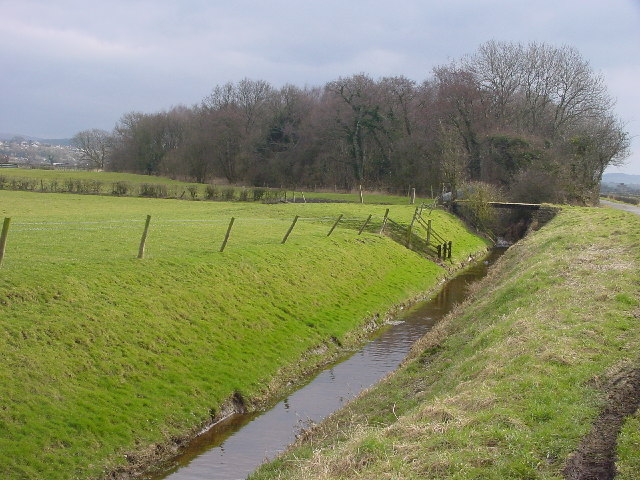 Dyke, Bridge and Wood