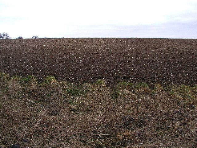 Eppleworth Road Farmland
