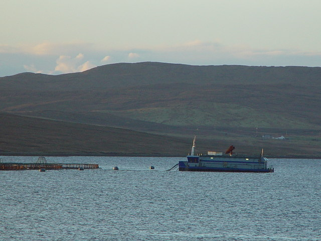 Dury Voe, Shetland