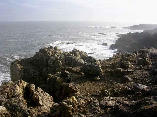 Cliffs to the south of Frenchman's Bay, South Shields