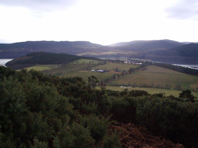 Looking down towards Creich Mains Farm