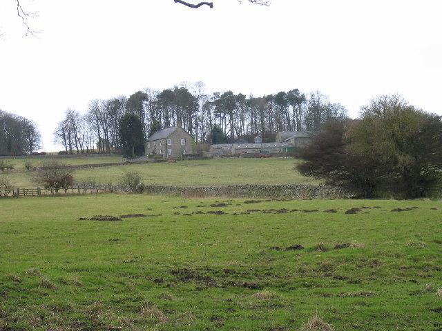 Burn Tongues Farm, near Allendale