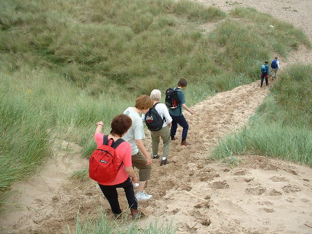 Sand dunes on the south side of the Aln Estuary