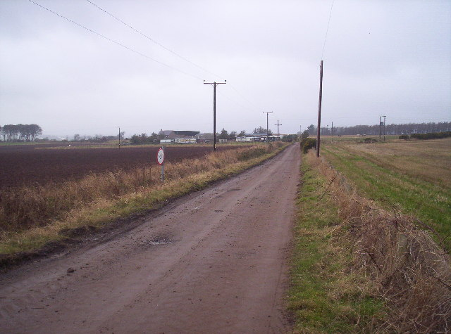 Track to Birkhill from Tarriebank Home Farm