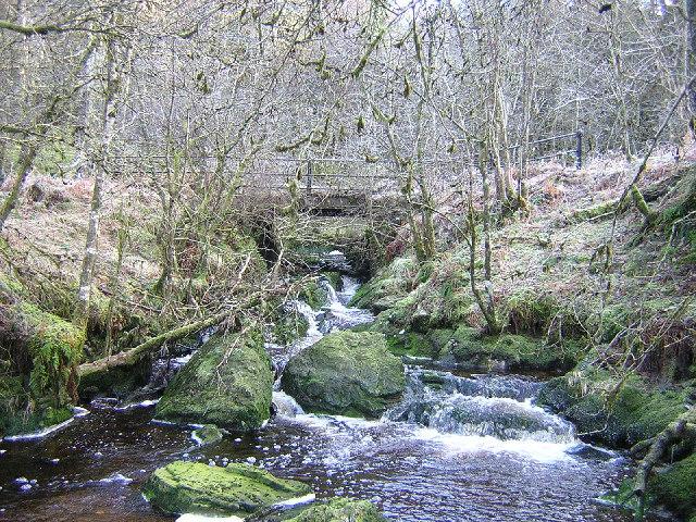 Castle Burn, Loch Ard Forest