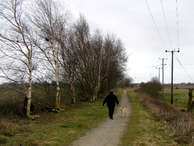 Silver Birches on the old Hull to Hornsea Railway