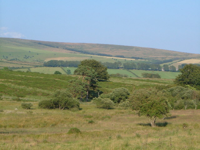 From Cator Common, Dartmoor