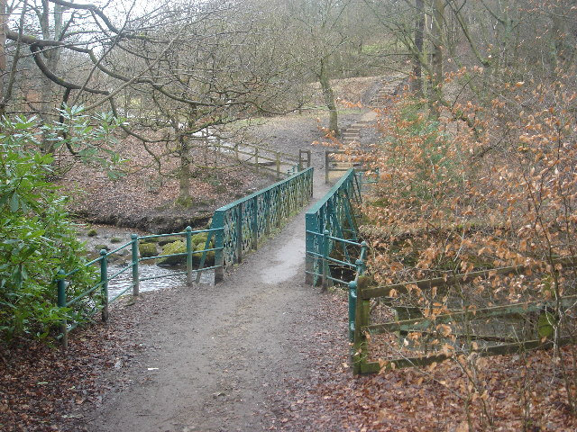 Footbridge over Jumbles outflow
