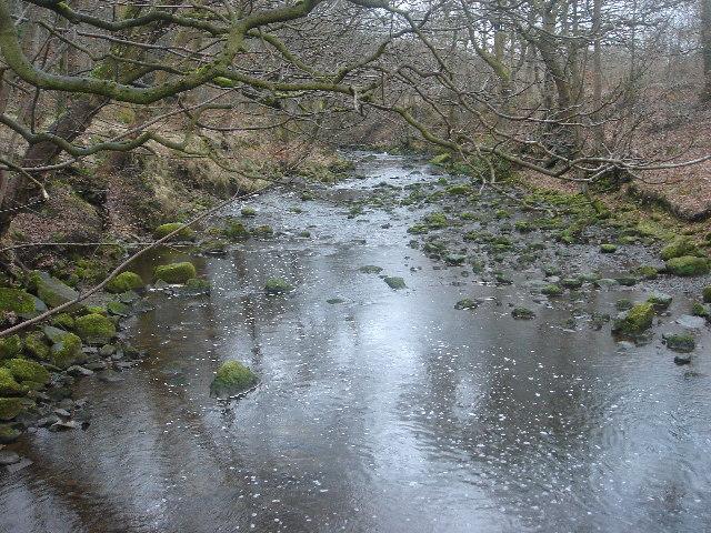 Bradshaw brook